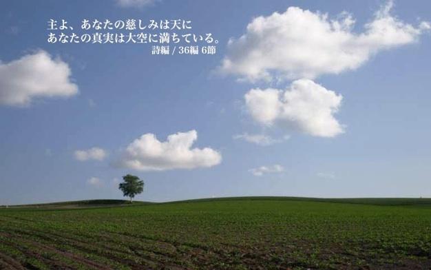 yun_962-1